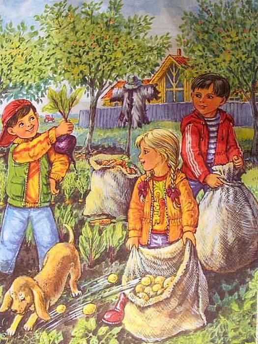 Картинка крыжовника для детей